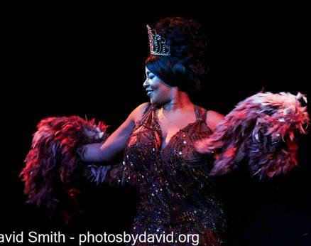 More Burlesque & Cabaret Shows